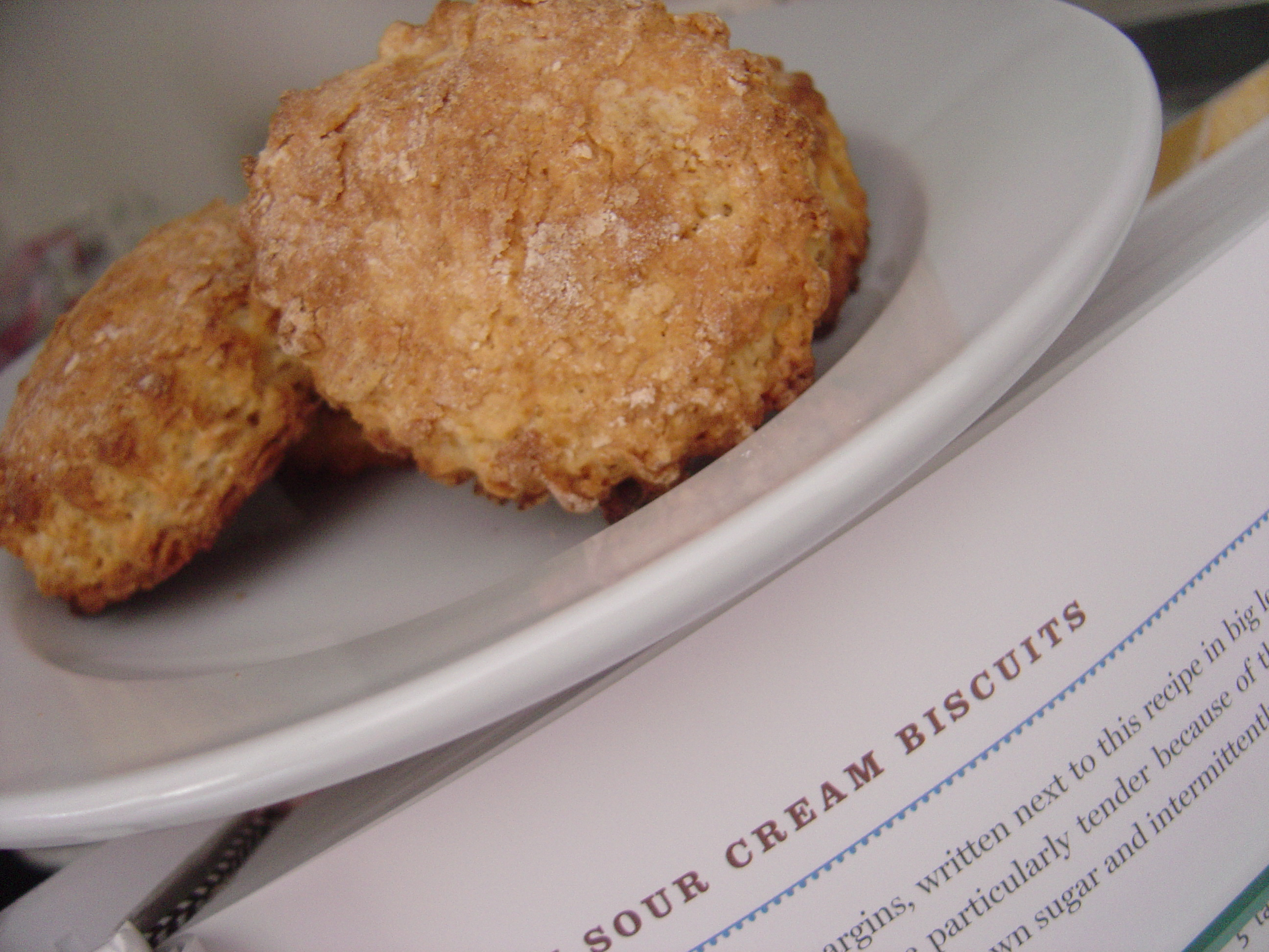 Pecan Sour Cream Biscuits - Smells Like Home